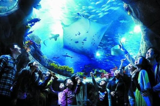 Skip the Line: Hong Kong Ocean Park...