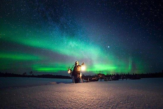 Renna Sami esperienza e aurora boreale