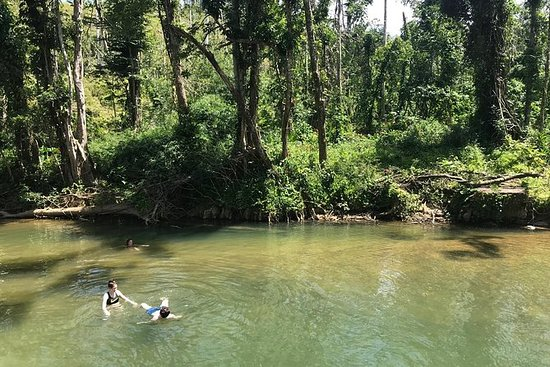Medio día de selva tropical de Yunque...