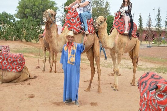 Camel ride and barbecue in Agadir