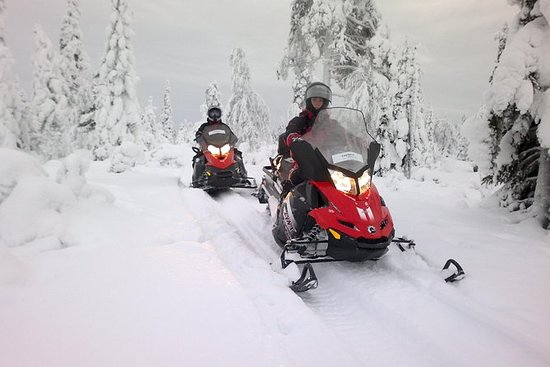 Safari de snowmobile na floresta