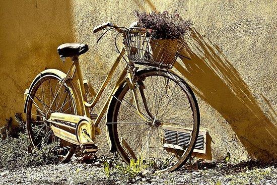 佛罗伦萨市VIP导游自行车之旅