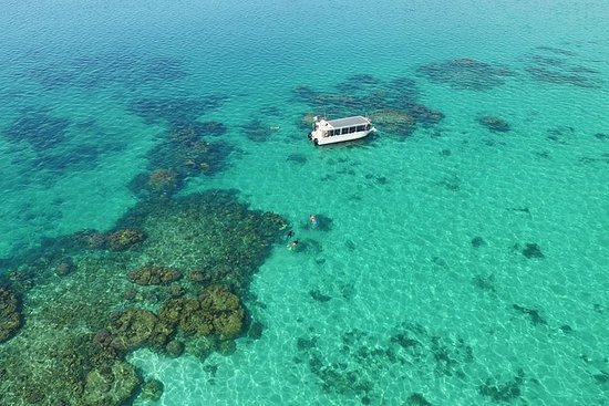 Coral Viewing, Snorkeling and Coastal...