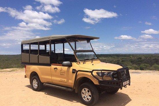 Journée complète Kruger Safari