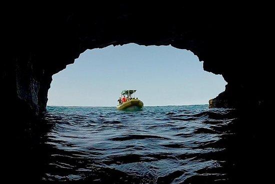Expedição South Kona
