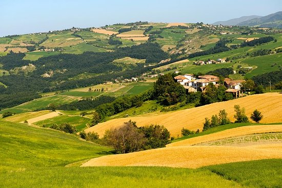 Sparkling Wine-tasting and Countryside Tour from Milan: Half-Day Wine Tour From Milan