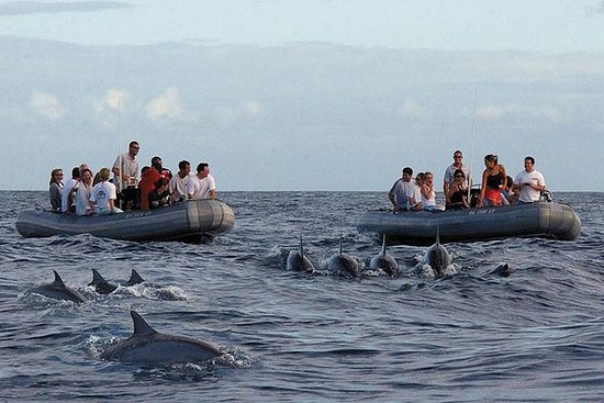 Kauai South Shore Picnic Snorkel...