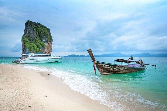 Tour de madrugadores a 4 islas y...