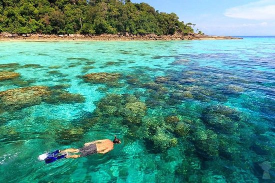 Snorkel Tour to Surin Islands by...