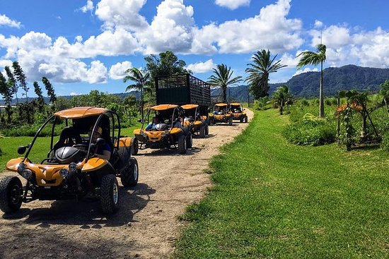 Shore Excursions - Buggy Adventure