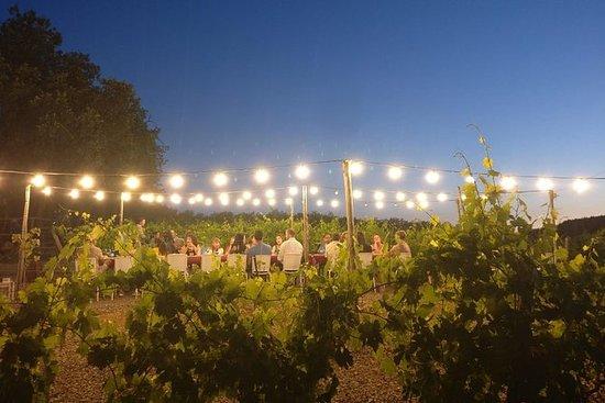 Dîner dans les vignobles de Sienne