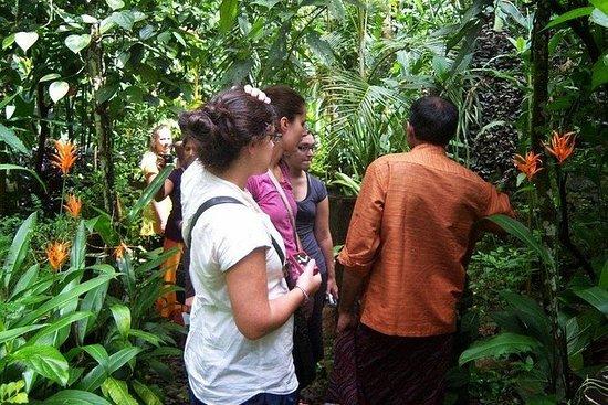 Kerala Wilderness Multi-Day Tour