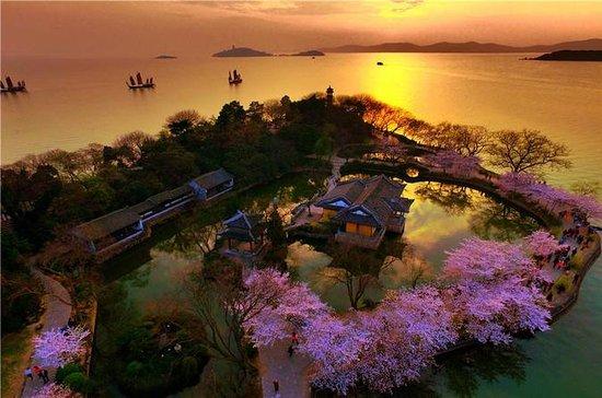 Excursão privada de Wuxi de Shanghai...