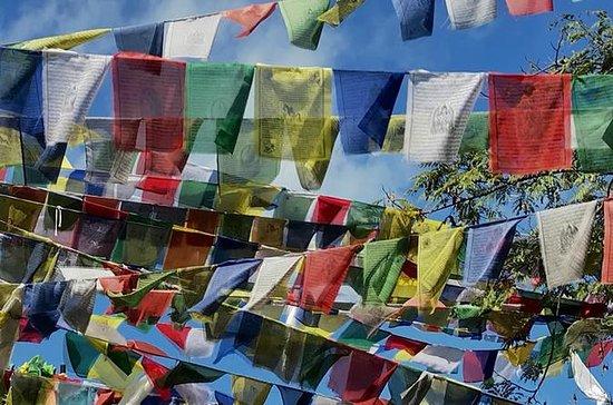 Yoga und Meditationstour in Nepal !!!