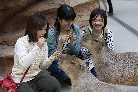 Kobe Animal Kingdom Admission Ticket