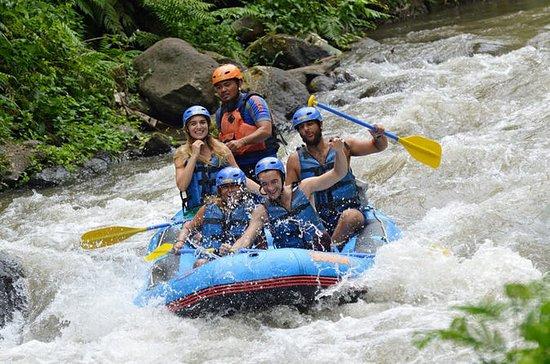 Bali Sobek Ayung River Rafting