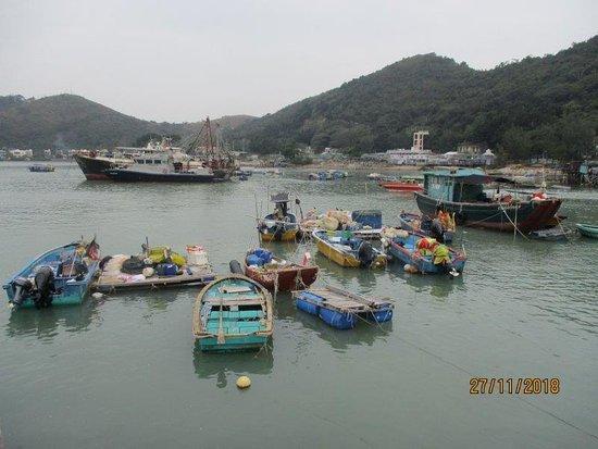 Tai O: plenty of boats b the pier