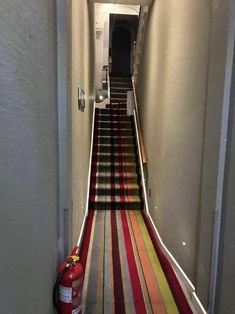 Seraphine London Kensington Gardens: Narrow, smelly stairs leading to reception