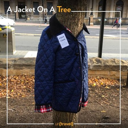 Turkiet: Goodness still finds a place in their hearts! People in Turkey and Bulgaria leave their jackets on trees for homeless. Isn't this sweet? . . #untravel #WinterLove #ownyourtrip #travel #adventure #wanderlust #vacation #travelgram #explore #holiday #travels #traveler #traveller #traveling #travelling #travelphotography #travelingram #winter #traveladdict #exploretocreate #passionpassport #tourism #mytravelgram
