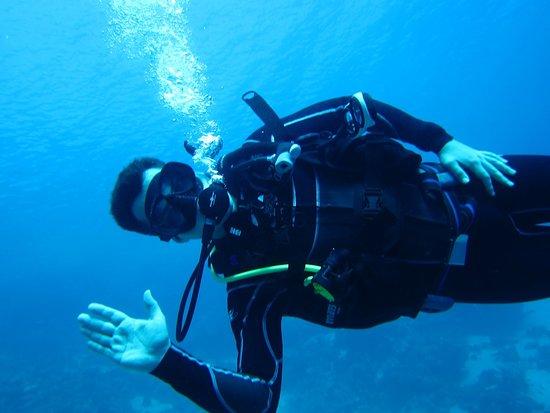red sea safari with MegaDive Club