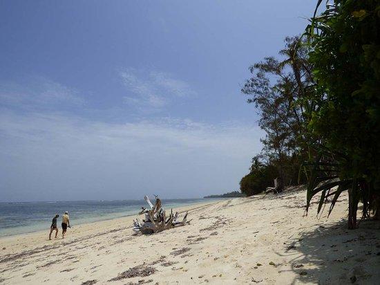 Kilifi, Kenya: walk at the beach