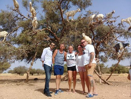First Marrakech Tours: On a journey to Essaouira