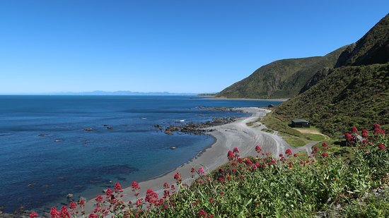 The coast in Spring.