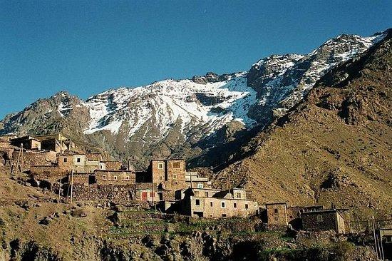 Targa Travel