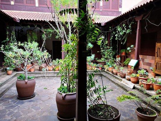 Centro de Visitantes del Patque Nacional del Garajonay