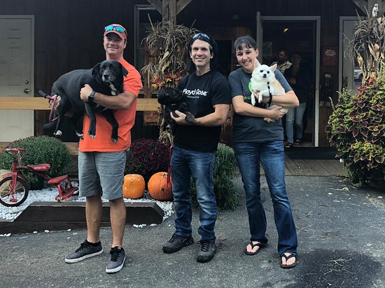 Ashford, CT: Pets welcome