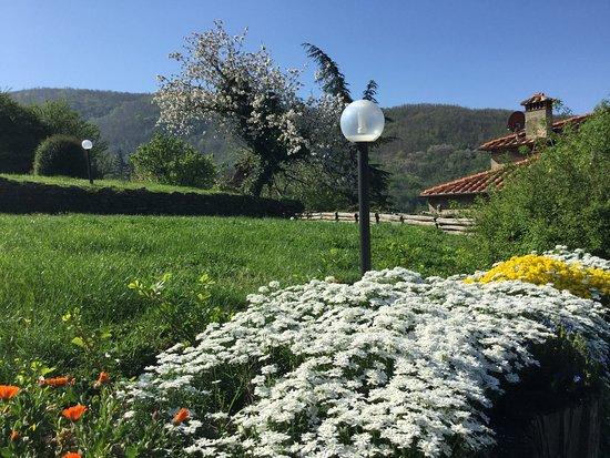 Vista del giardino a primavera