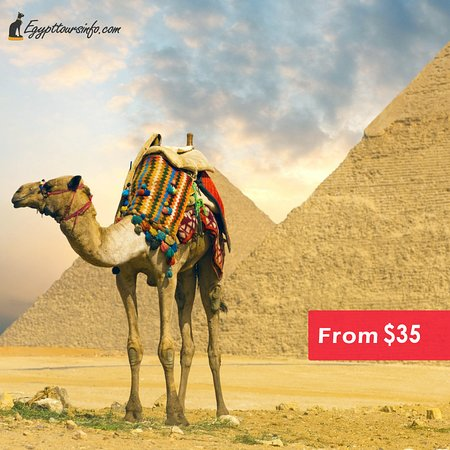 Egypt Tours Info Day Tours