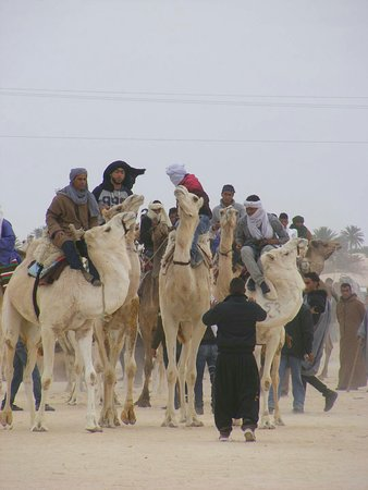 Douz, ตูนิเซีย: Guide Tunisie