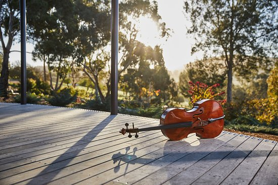 Mount Barker, Австралия: c.1743 'Ngeringa' Guadagnini cello, Piacenza, on UKARIA Cultural Centre deck. Photo Randy Larcombe