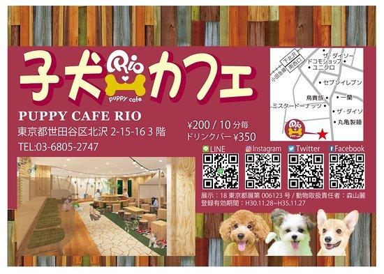 Puppy Cafe Rio Shimokitazawa