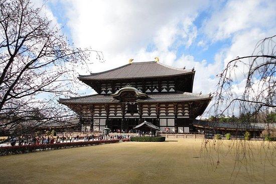 Kyoto and Nara Day Trip from Kyoto...