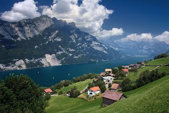 Heidiland and Liechtenstein Tour from...