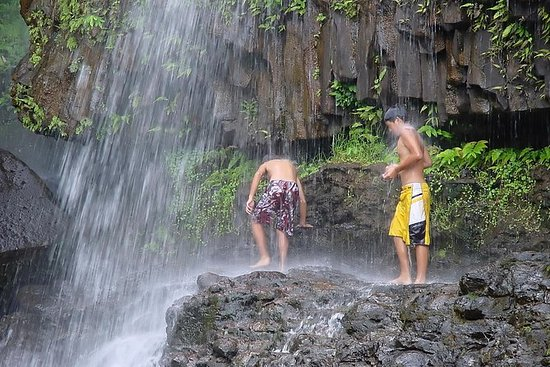 Kohala Waterfalls Small Group...