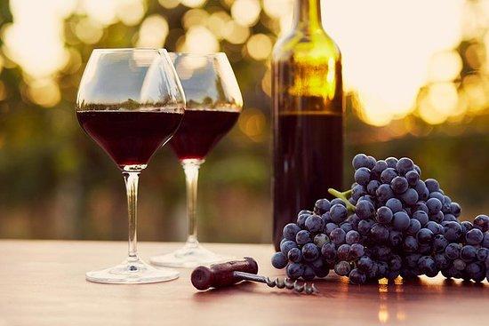 Half Day Pompei Tour med vinsmaking...