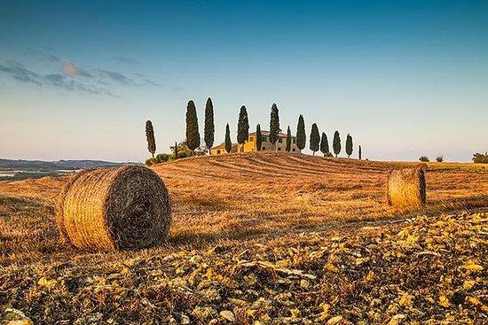 佛羅倫薩的私人基安蒂托斯卡納葡萄酒品鑑之旅