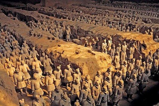 Excursión a escala privada de Xian...