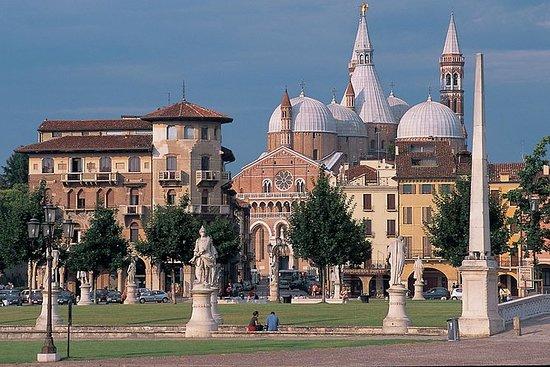 Private halbtägige Tour von Padua aus...