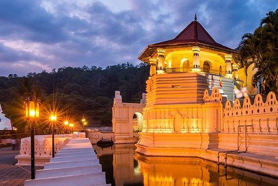 Kandy, Peradeniya & Pinnawala Tour fra...
