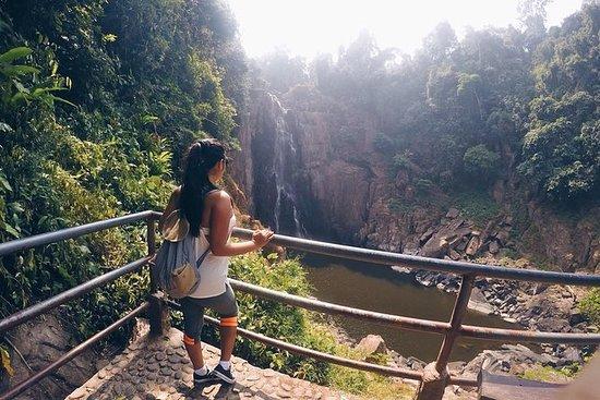 Full-Day Khao Yai National Park...