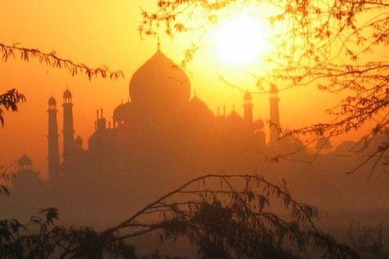 从德里的日出泰姬陵游览乘汽车