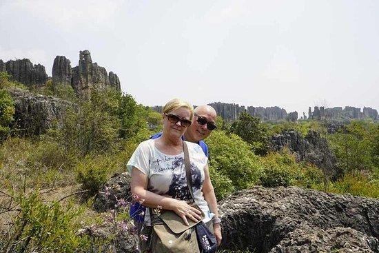 En dags Tour Stone Forest & Jiuxiang ...