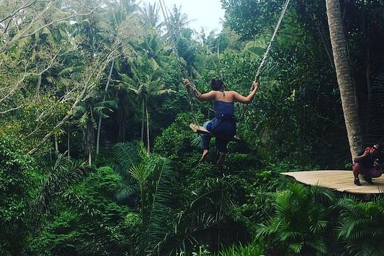 Bali Swing Experience with Ayung...