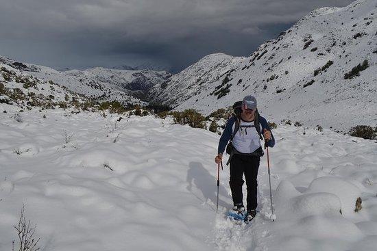 Caminhada com raquetes de neve...