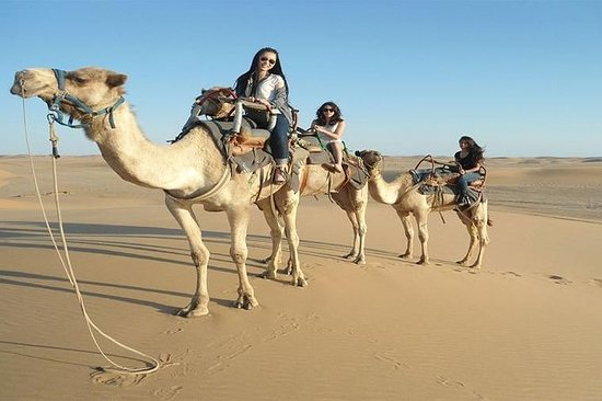 Safari do Deserto em Hurghada e Vida na...