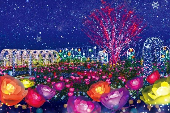 Ashikaga Flower Park Admission Ticket